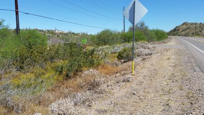 New River Residential Lots & Land For Sale: 46000 N Black Canyon Frontage Highway
