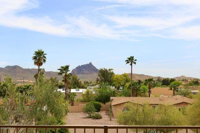 Fountain Hills Single Family Home For Sale: 17152 E Parlin Drive
