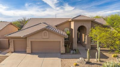 Scottsdale Single Family Home For Sale: 9696 E Balancing Rock Road