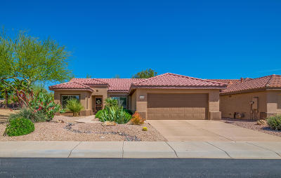 Surprise Single Family Home For Sale: 16334 W Desert Canyon Drive
