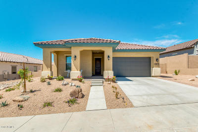 Goodyear Single Family Home For Sale: 11872 S 183rd Drive