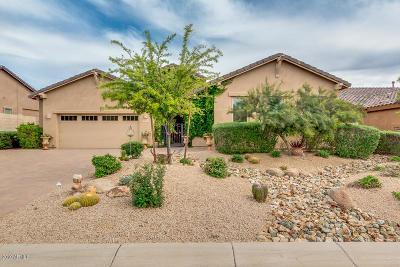 Cave Creek Single Family Home For Sale: 5731 E Ashler Hills Drive