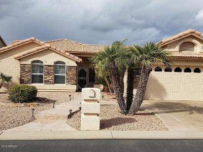 Goodyear Single Family Home For Sale: 15358 W Catalina Court
