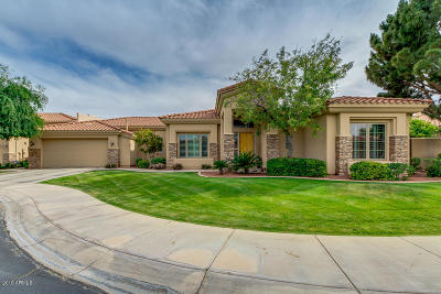 Chandler, Fountain Hills, Gilbert, Mesa, Paradise Valley, Queen Creek, Scottsdale, Gold Canyon, San Tan Valley Single Family Home For Sale: 4317 W Rickenbacker Way