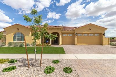 Mesa Single Family Home For Sale: 4317 S Binary Circle