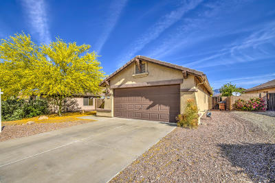 Gold Canyon Single Family Home For Sale: 10274 E Peralta Canyon Drive
