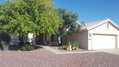 Goodyear Single Family Home For Sale: 2991 N 151st Lane