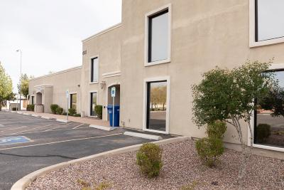 Mesa Commercial For Sale: 605 N Gilbert Road