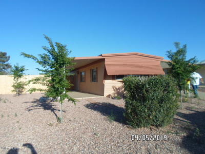 Sun City Mobile/Manufactured For Sale: 19227 N Carnation Drive