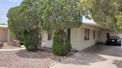 Mesa Residential Lots & Land For Sale: 3160 E Main Street
