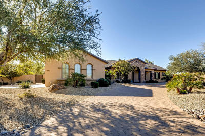 Surprise Single Family Home For Sale: 14429 W Desert Cove Road