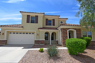 Queen Creek Single Family Home For Sale: 22453 E Creekside Lane