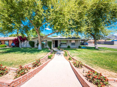 Phoenix Single Family Home For Sale: 1640 E Montebello Avenue