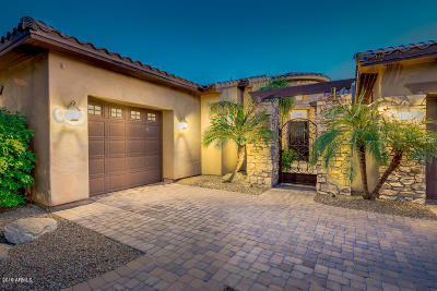 Single Family Home For Sale: 9883 E Voltaire Drive