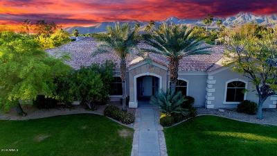 Scottsdale Single Family Home For Sale: 11942 E Ironwood Drive