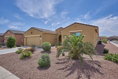 Maricopa Single Family Home For Sale: 42981 W Sandpiper Drive