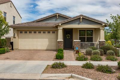 Mesa Single Family Home For Sale: 5137 S Fleming Lane