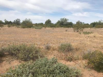 Surprise Residential Lots & Land For Sale: E Frontier Road