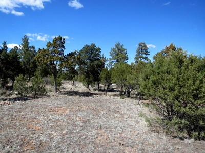 Overgaard AZ Residential Lots & Land For Sale: $72,500