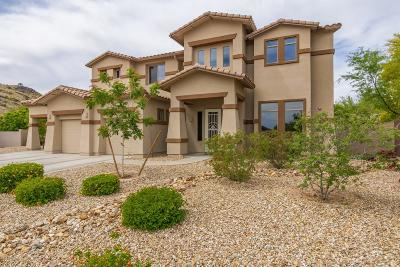 Phoenix AZ Single Family Home For Sale: $799,000