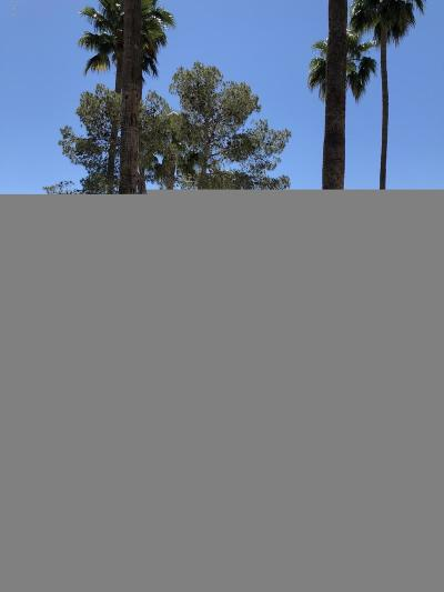 Sun City West Rental For Rent: 19453 N Star Ridge Drive
