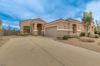 Single Family Home For Sale: 11567 E Desert Willow Drive