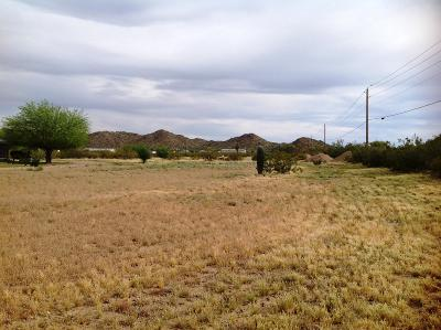 Queen Creek Residential Lots & Land For Sale: 4653 W Roberts Road
