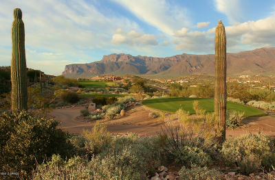 Gold Canyon Residential Lots & Land For Sale: 4335 S El Camino Del Bien