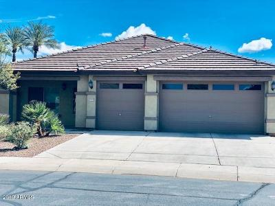 Maricopa Single Family Home For Sale: 43862 W Scenic Drive