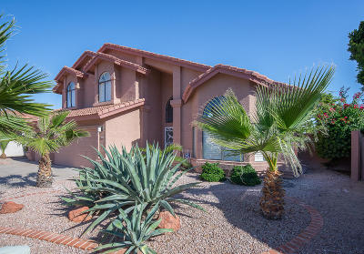 Phoenix Single Family Home For Sale: 3619 E Desert Flower Lane