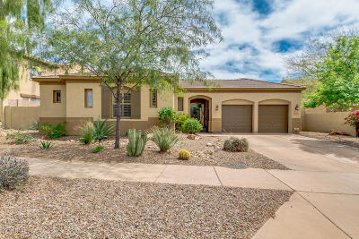 Phoenix Single Family Home For Sale: 35407 N 27th Drive