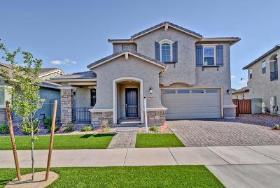Gilbert Single Family Home For Sale: 3847 E Welton Lane