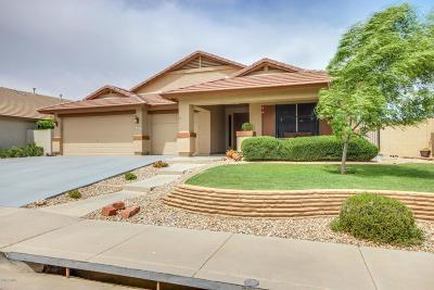 Peoria Single Family Home For Sale: 9612 W Diana Avenue