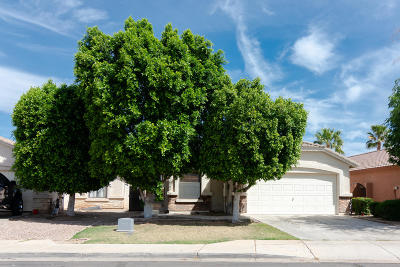 Mesa Single Family Home For Sale: 8720 E Nopal Circle