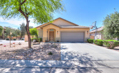 Maricopa Single Family Home For Sale: 43947 W Buckhorn Trail