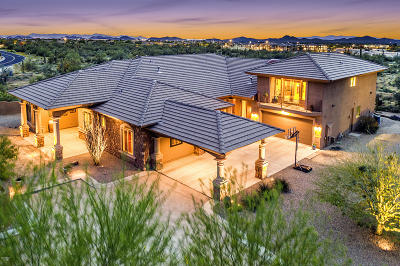 Cave Creek AZ Single Family Home For Sale: $900,000