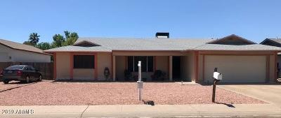Tempe Single Family Home For Sale: 225 E Strahan Drive