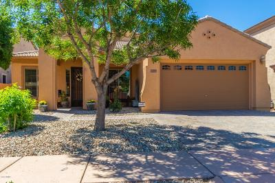 Phoenix Single Family Home For Sale: 3409 W Little Hopi Drive