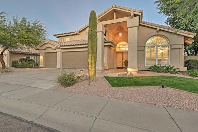 Cave Creek AZ Single Family Home For Sale: $569,000