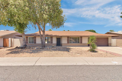 Phoenix Single Family Home For Sale: 102 E Muriel Drive