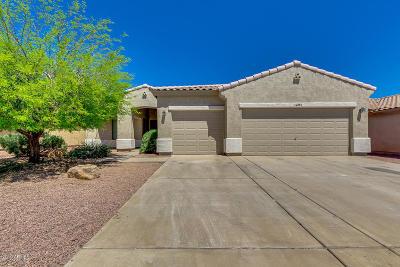 Surprise Single Family Home For Sale: 14852 W Maui Lane