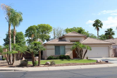 Chandler Single Family Home For Sale: 3014 E Winged Foot Drive