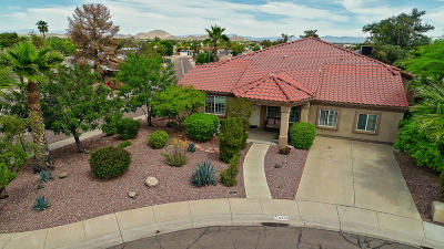 Phoenix Single Family Home For Sale: 15825 N 19th Place