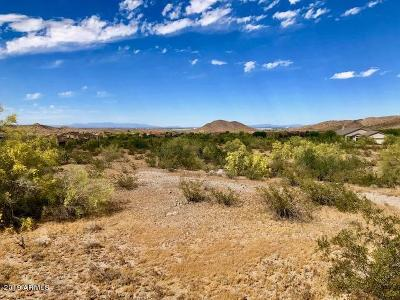 Goodyear Residential Lots & Land For Sale: 9645 S Krista Drive E