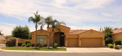 Chandler Single Family Home For Sale: 4462 S Wildflower Place