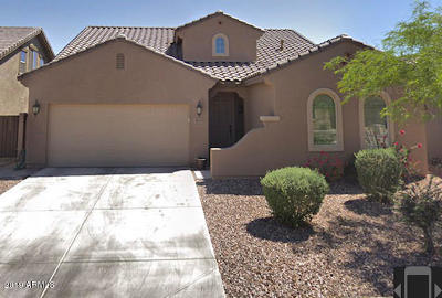San Tan Valley Single Family Home For Sale: 405 E Castle Rock Road
