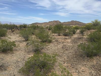 Peoria Residential Lots & Land For Sale: 26333 N 92nd Avenue