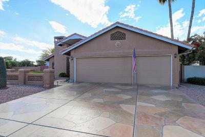 Sun Lakes Single Family Home For Sale: 26042 S Hollygreen Drive