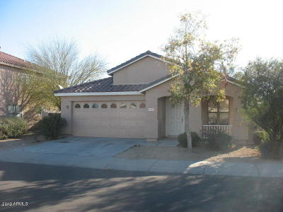 Phoenix Single Family Home For Sale: 4707 N 92nd Avenue