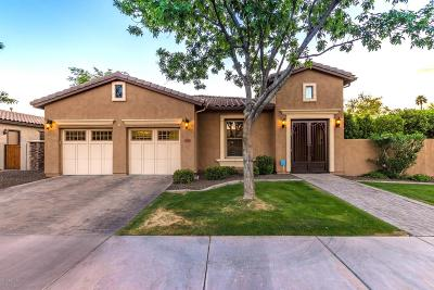 Tempe Single Family Home For Sale: 7648 S La Corta Drive